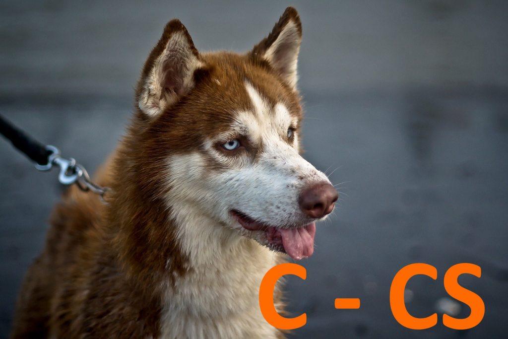 kutya nevek c -cs betűvel