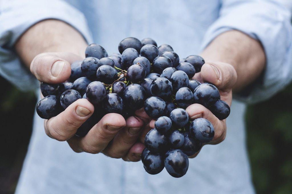 a szőlő is a legegészségesebb gyümölcsök táborát erősíti